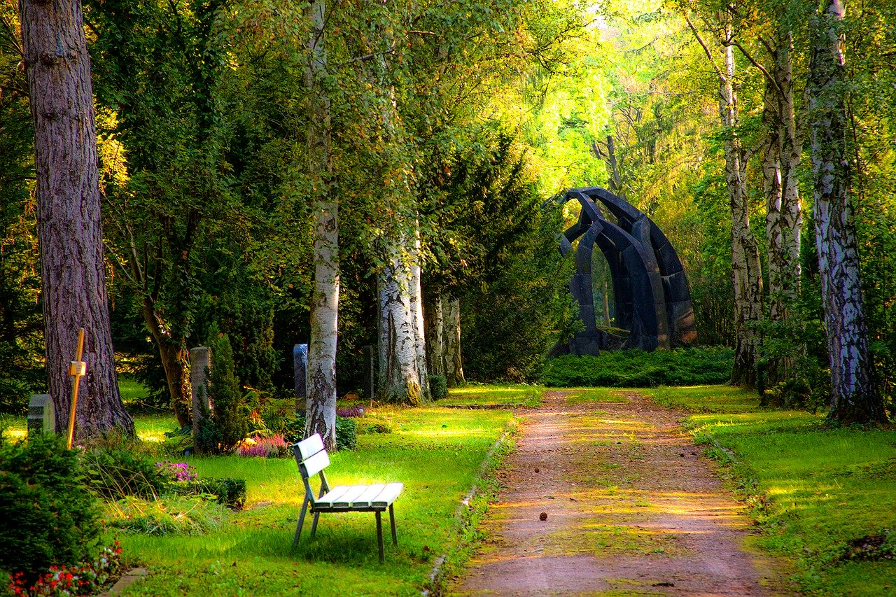 cemetery, forest, grave stones